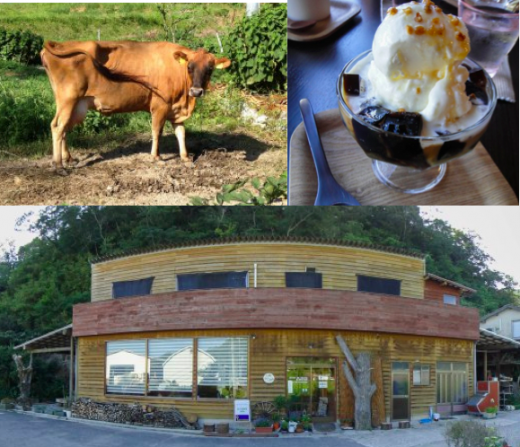 【Exploring Unfamilar Japan】We have dessert and meet a cow named Julia at an organic island café